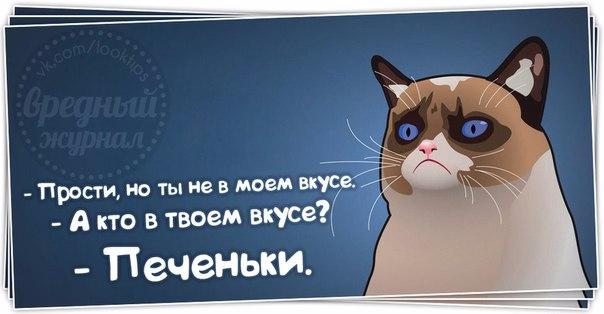1383158328_frazochki-24 (604x314, 139Kb)