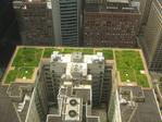 Превью 1024px-20080708_Chicago_City_Hall_Green_Roof (700x525, 463Kb)