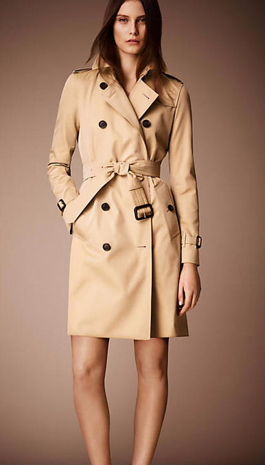 Hot-classic-2015-women-fashion-British-Long-Style-Elegnt-Trench-font-b-coat-b-font-designer (386x677, 123Kb)