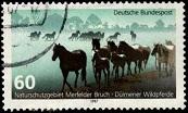 2.18.1.40.1 Природоохраняемая зона Merfelde Bruch Дикие лошади (173x104, 13Kb)
