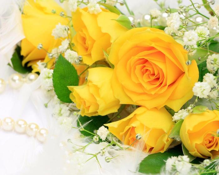 Песня жёлтая роза разлука красная роза любовь