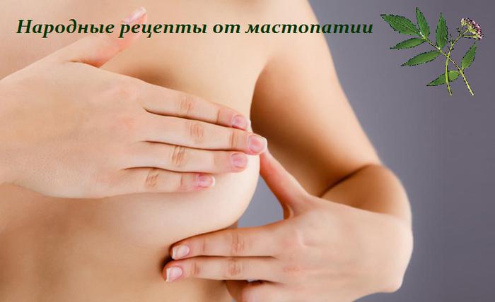 1450104040_narodnuye_receptuy_ot_mastopatii (700x428, 287Kb)