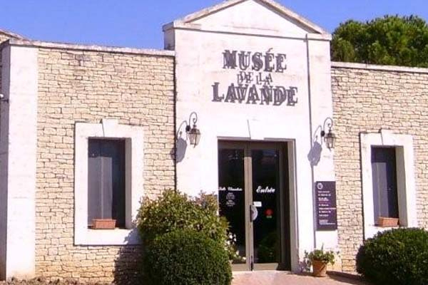 Muzej-lavandy- (600x400, 239Kb)