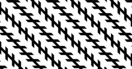 5462122_Illuziya_Cyollnera___1459506202_illyuzii6 (500x262, 34Kb)