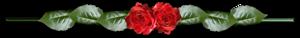 0_987fd_f570c265_M (300x38, 16Kb)