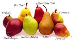 Превью pears (360x202, 52Kb)