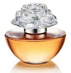 Превью 1272517766_beautiful_scent_bottles__1 (488x500, 141Kb)