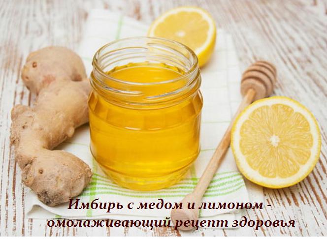 2749438_Imbir_s_medom_i_limonom__omolajivaushii_recept_zdorovya (664x486, 506Kb)