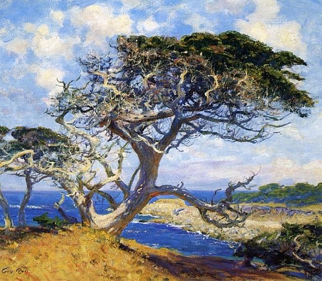 Monterey Cypress (636x555, 541Kb)