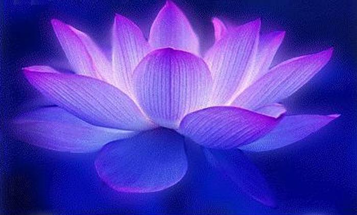 meditate91 (700x421, 151Kb)