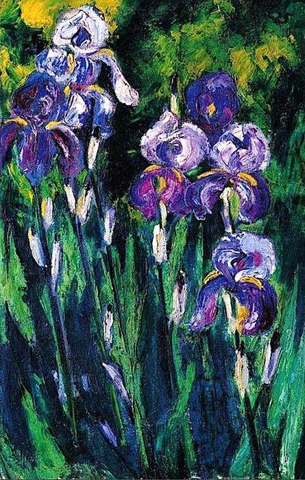 5187787_irisIrises_in_Evening_Shadows_1925_Max_Pechstein (445x700, 574Kb)