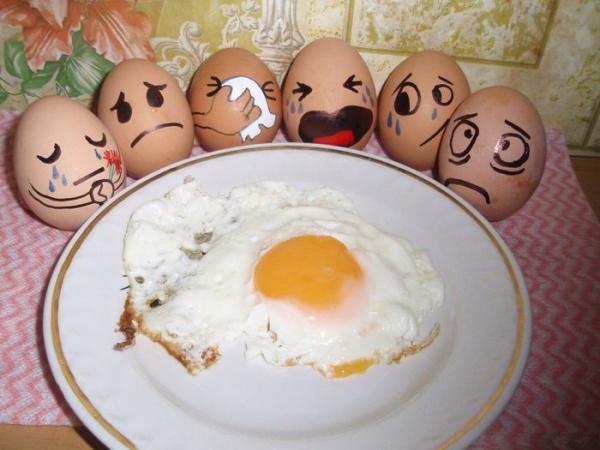 4483818_funny_eggs_1 (600x450, 90Kb)