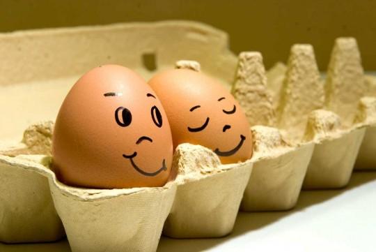 4483818_funny_eggs_9 (540x361, 38Kb)