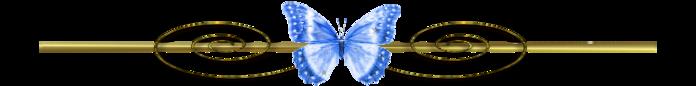 0_ffec0_c23198e3_XXXL (700x86, 48Kb)
