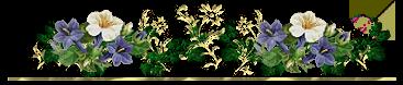 WDTNYST (90) (367x78, 51Kb)