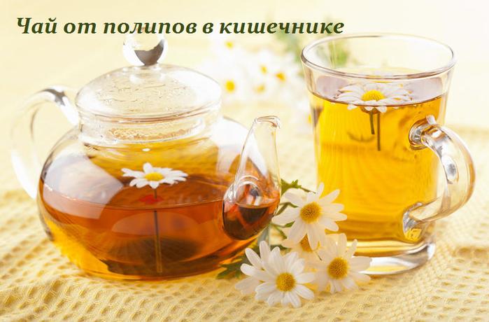 2749438_Chai_ot_polipov_v_kishechnike_1_ (700x460, 427Kb)
