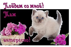 3740065_113611449_90042184_0_8b6a6_fff808de_Mkopirovanie (300x199, 77Kb)