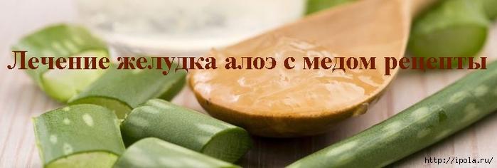 2835299_Lechenie_jelydka_aloe_s_medom_recepti (700x236, 113Kb)