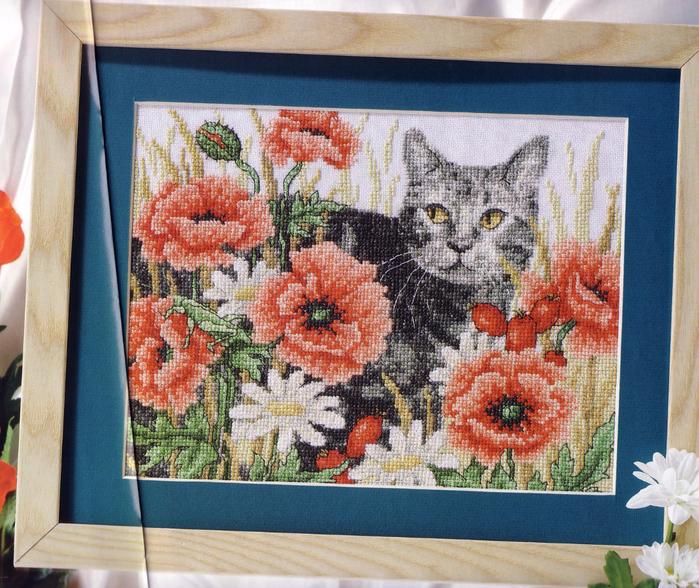 十字绣刺绣。猫在罂粟花 - 壹一 - 壹一编织博客