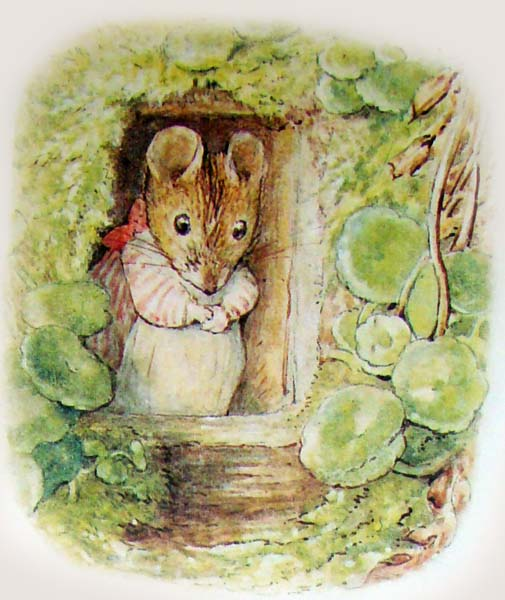 the_tale_of_mrs_tittlemouse_04 (505x600, 84Kb)