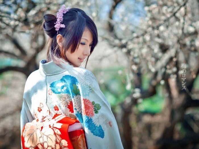 japan_fakts_14 (700x525, 61Kb)