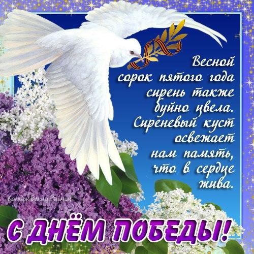 100708169_foto5jpg_3265443_7925261 (500x500, 94Kb)