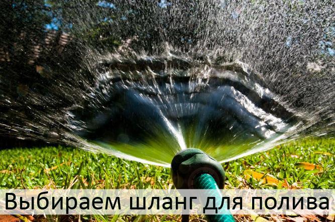 5390190_waterkopiyakopiya (667x442, 88Kb)