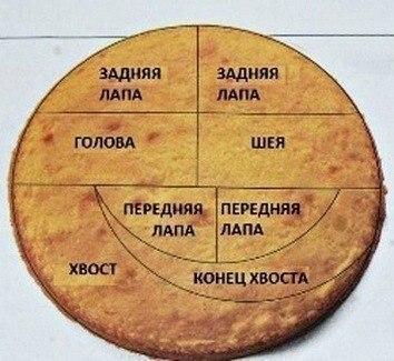 02 (354x325, 119Kb)