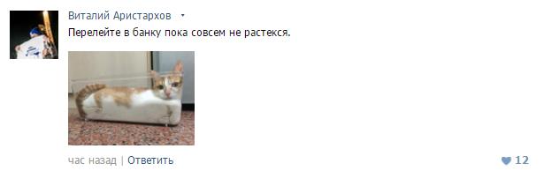 кот_потёк1 (615x194, 36Kb)
