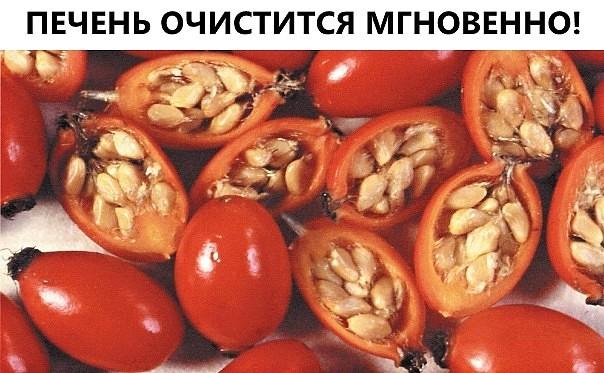 image (10) (604x373, 78Kb)