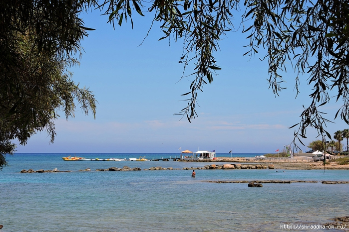 Кипр, май 2016 (12) (700x466, 335Kb)