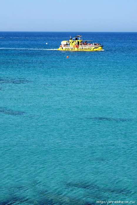 Кипр, май 2016 (16) (466x700, 283Kb)