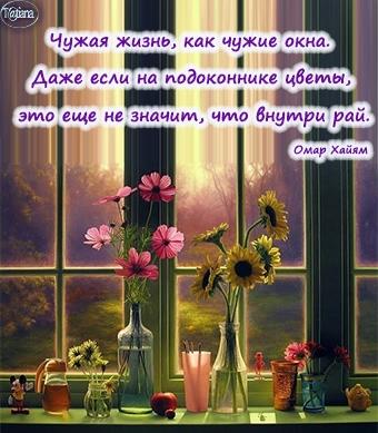 цветы на окне (340x389, 143Kb)