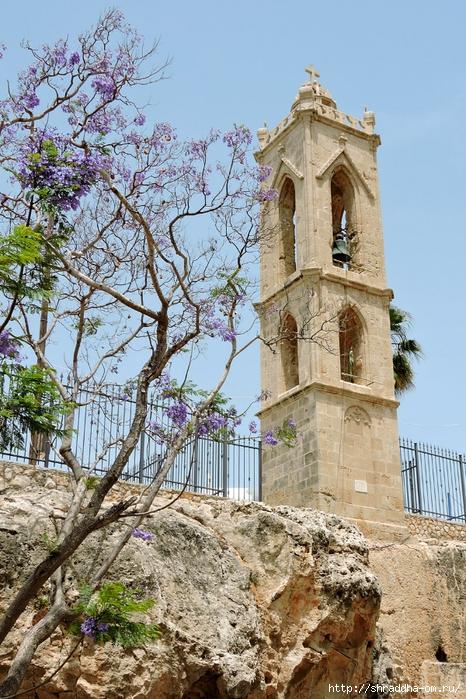 Кипр, май 2016 (23) (466x700, 371Kb)