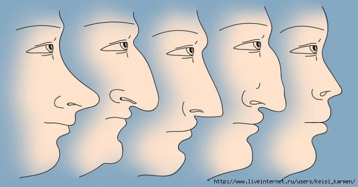 нос (700x366, 126Kb)