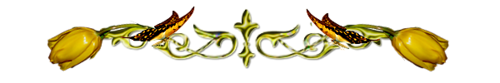 pic (9) (500x83, 42Kb)