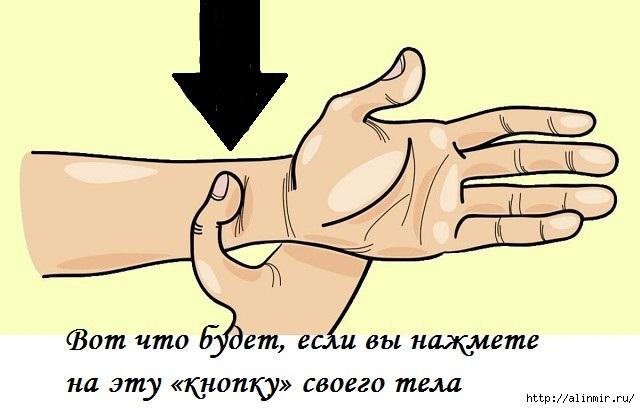 5283370_tochka_na_ryke (640x409, 103Kb)