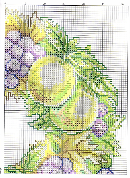 Fruit Wreath cushion3 (514x700, 614Kb)