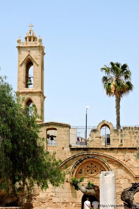 Кипр, май 2016 (26) (466x700, 275Kb)