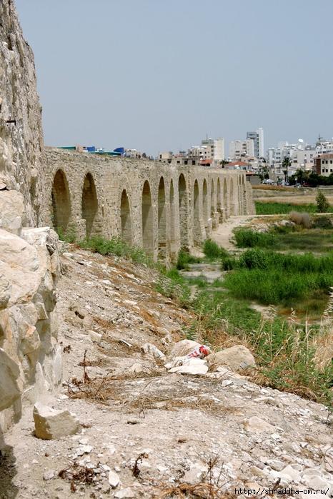 Кипр, май 2016 (30) (466x700, 323Kb)