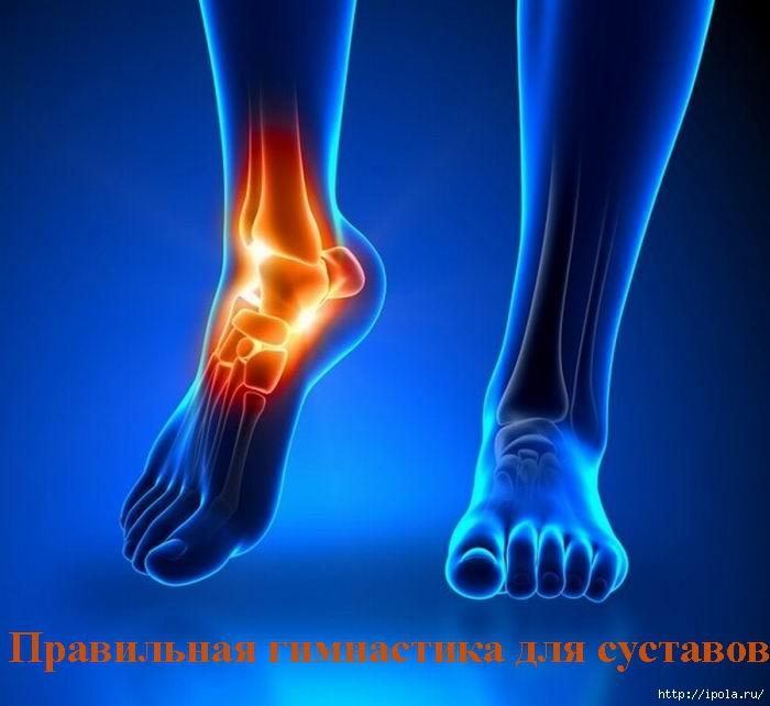 "alt=""Правильная гимнастика для суставов""/2835299_Pravilnaya_gimnastika_dlya_systavov (700x642, 178Kb)"