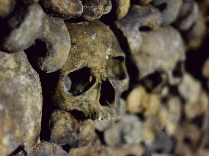 katakomby-parizha-kladbische-pod-nogami-10-foto_1 (700x525, 399Kb)
