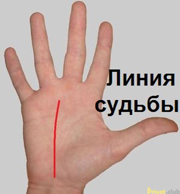 5462122_SYDBA__img_17980_original800800 (600x648, 135Kb)