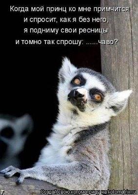 JyiYr_eONxQ (283x399, 32Kb)