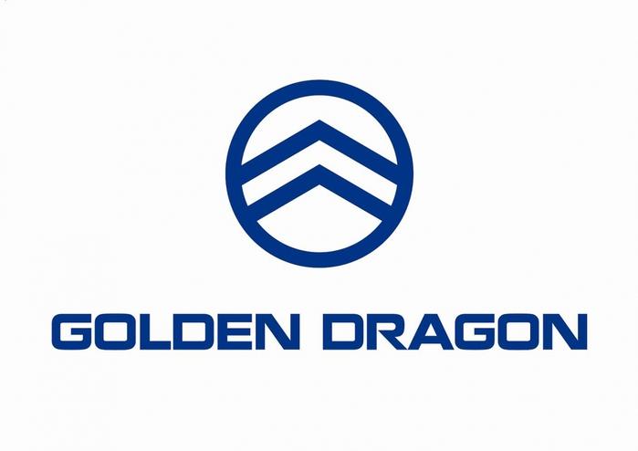6038355_Golden_Dragon (700x494, 109Kb)