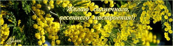 128464554_foto__23_ (600x160, 243Kb)