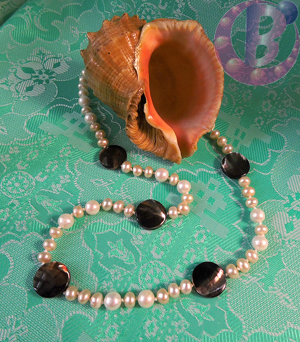 Ожерелье из жемчуга и перламутра/3356707_perlamutr_2 (614x700, 397Kb)