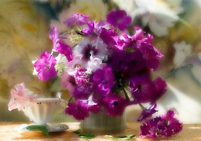 cvety_foto_Dasha_Nikonchuk_17 (699x489, 75Kb)