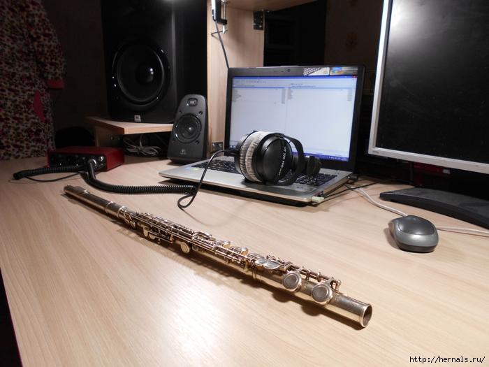 поперечная флейта/4555640_DSCN0006_2_1_ (700x525, 268Kb)