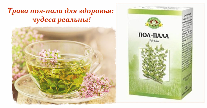 2749438_Trava_polpala_dlya_zdorovya (700x365, 300Kb)